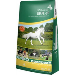 Shape up 20 kg (Saracen)