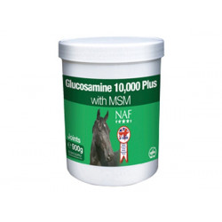 Glukosamin 10.000 900g