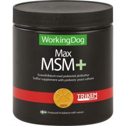 Max MSM+ 450g
